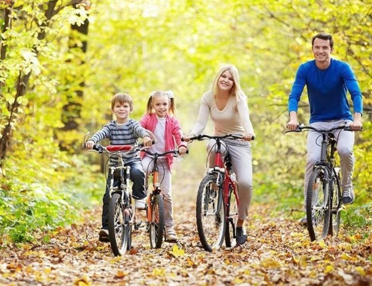 Семья с детьми на велосипедах в лесу